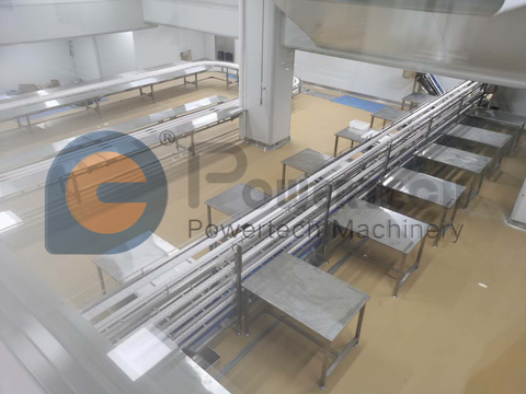 Automatic High Capacity Salmon Processing Line