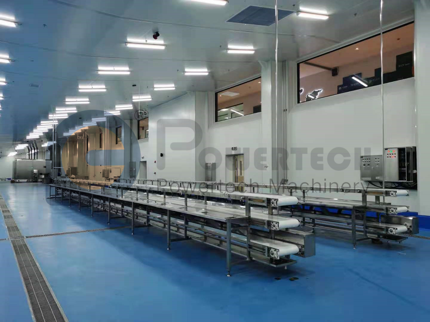 Customized Automatic Catfish Processing Line
