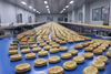 Food Safety Hygiene Bakery Food Processing Line