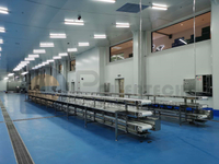 Lowest Operation Cost Automatic Catifish Processing Line