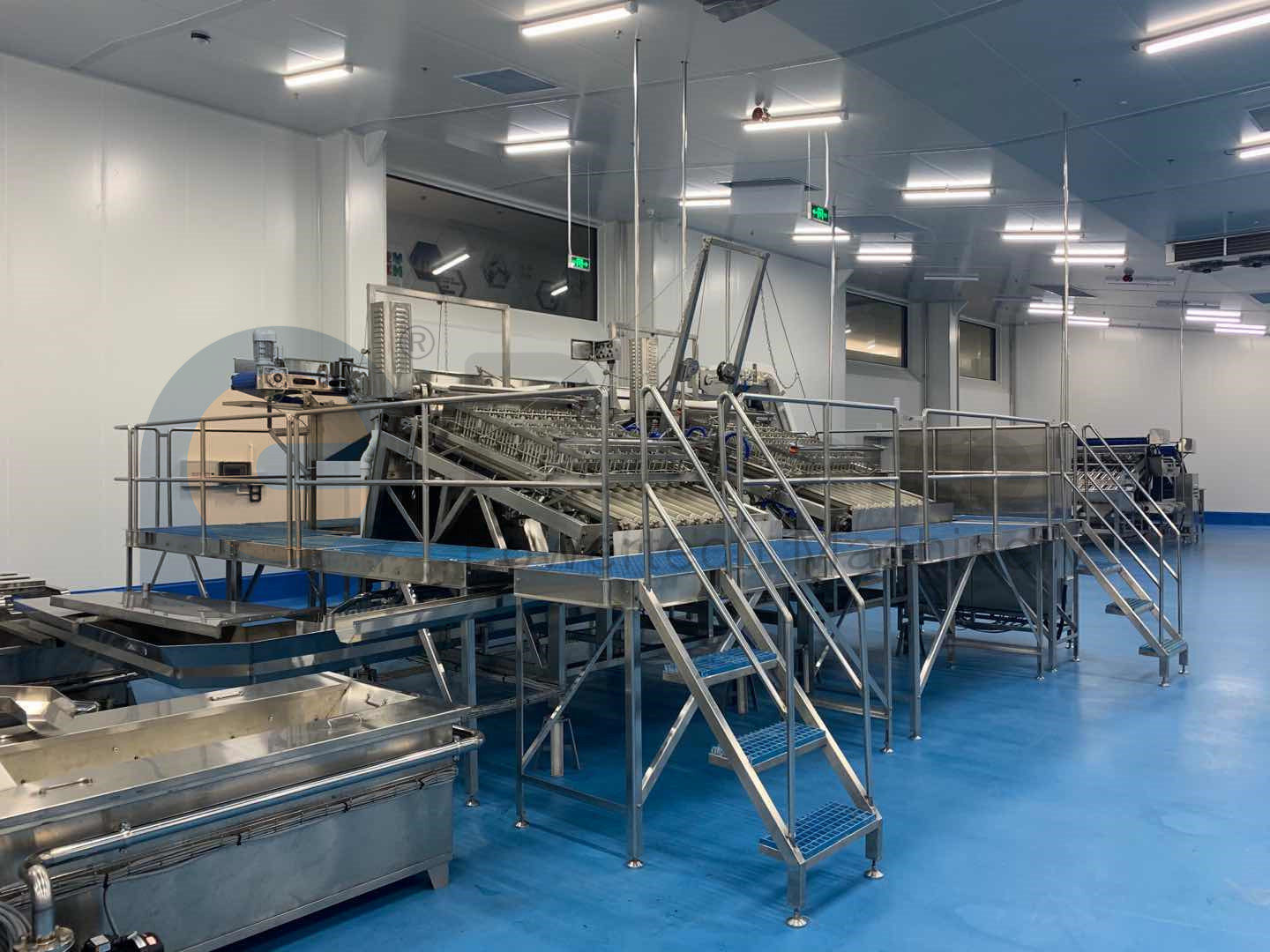 Automatic High Capacity Vannmei PUD Processing Line