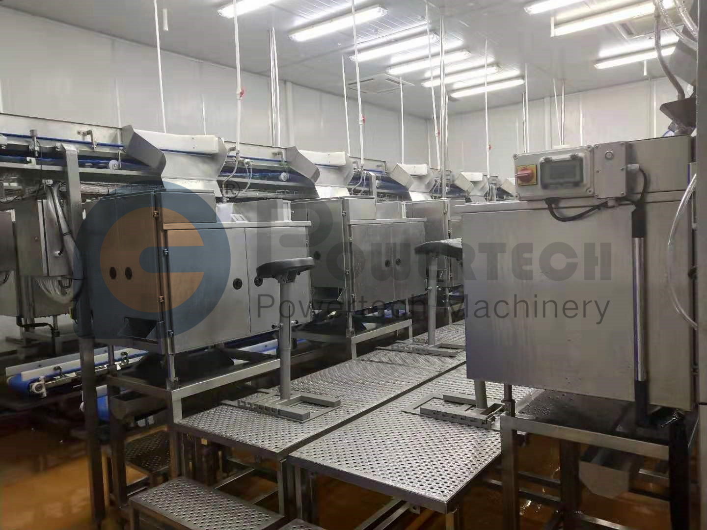 Multifunctional Automatic Vannamei Deveining Processing Line