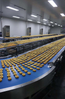 Flexible Automatic Bakery Food Processing Line