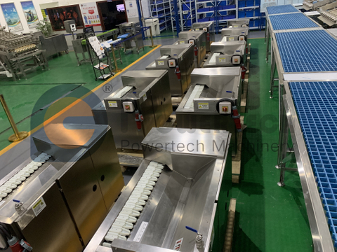Customized Automatic Crayfish Processing Line
