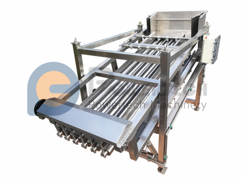 High Efficient Automatic Fish Grading Machine